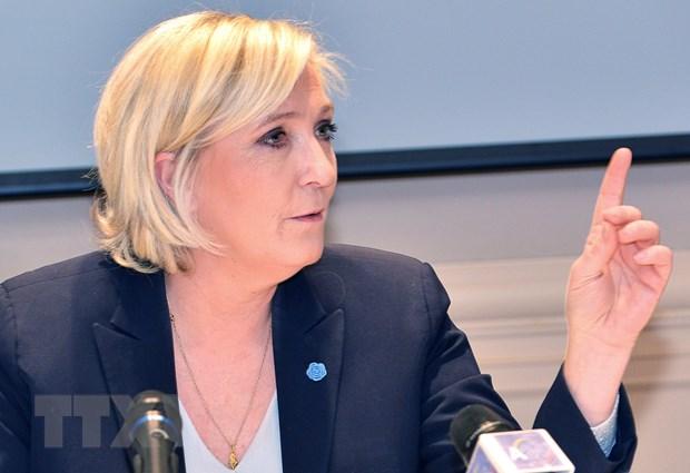 Phap dieu tra nguoi phu trach chien dich tranh cu cua ba Marine Le Pen hinh anh 1
