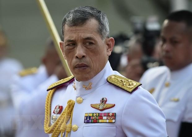 Nha vua Thai Lan Vajiralongkorn chinh thuc len ngoi vao cuoi nam hinh anh 1