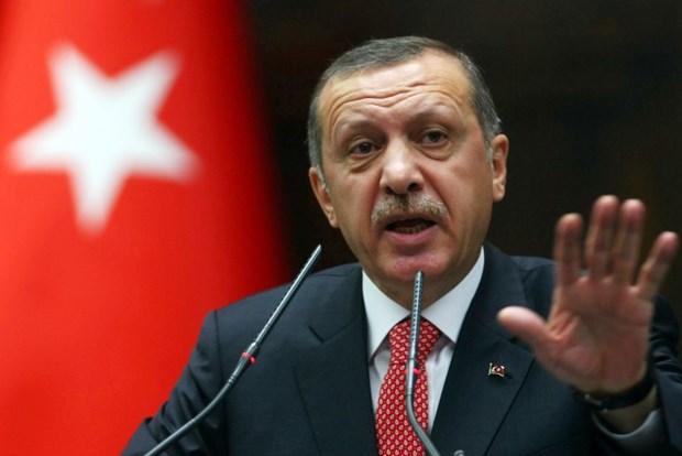 Tong thong Erdogan len tieng ve vu ngat xiu trong le cau nguyen hinh anh 1