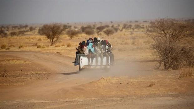 Niger: LHQ cuu hon 20 nguoi bi bo roi nhieu ngay tai sa mac hinh anh 1