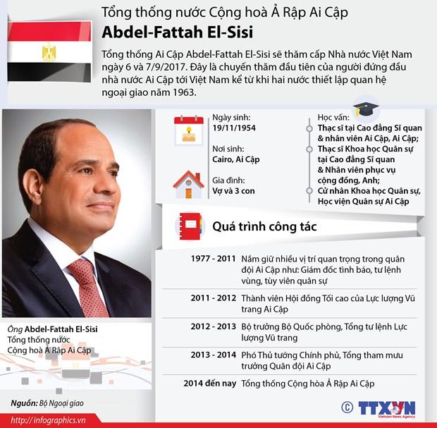 Tong Bi thu Nguyen Phu Trong tiep Tong thong Cong hoa Arab Ai Cap hinh anh 2
