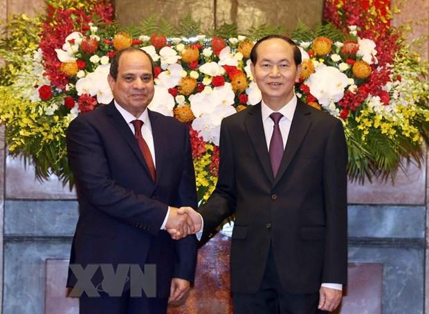Thong cao bao chi chung ve chuyen tham Viet Nam cua Tong thong Ai Cap hinh anh 1