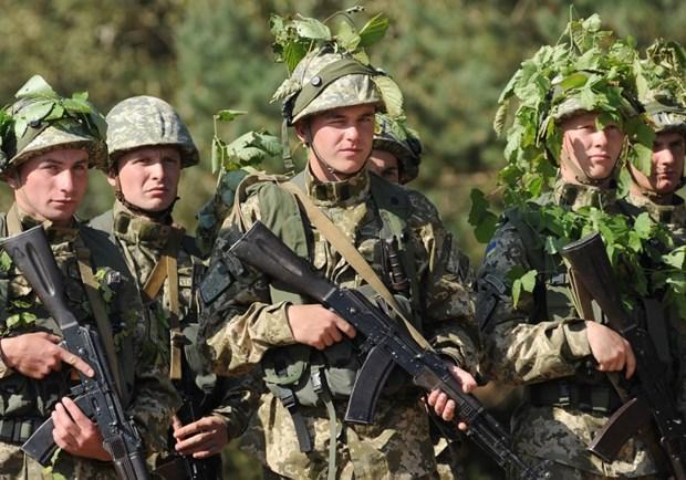 Quan doi Ukraine va NATO bat dau cuoc tap tran