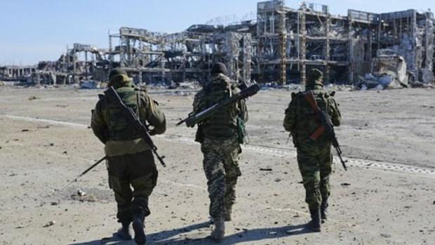 Nhom Tiep xuc ve Ukraine nhat tri ngung ban tai Donbass tu 23/12 hinh anh 1