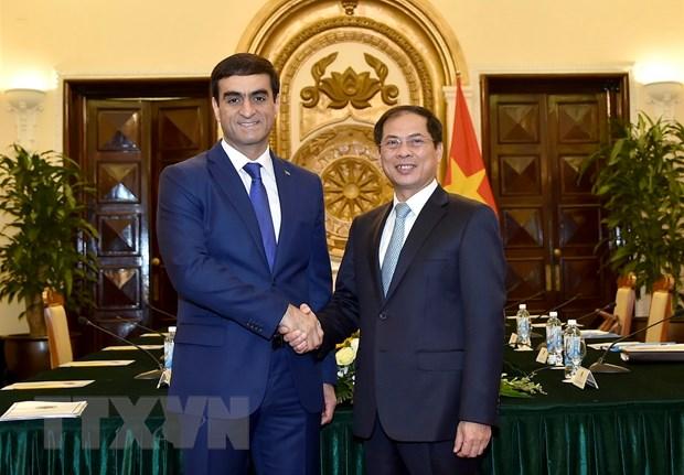 Tham van chinh tri giua hai bo ngoai giao Viet Nam va Turkmenistan hinh anh 1
