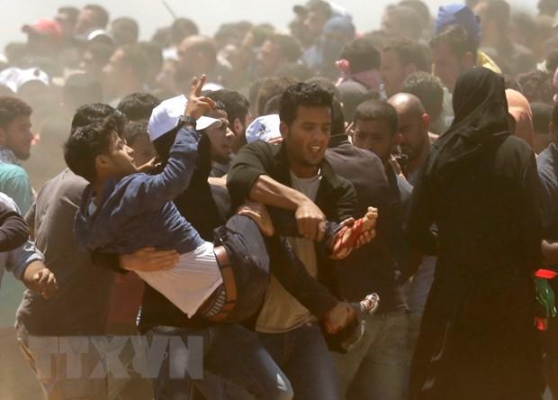 PLO keu goi bieu tinh phan doi My, Israel rong khap Bo Tay va Dai Gaza hinh anh 1