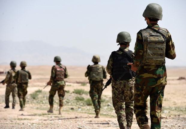 Tuong My: Taliban, gioi chuc Afghanistan dam phan bi mat ve ngung ban hinh anh 1