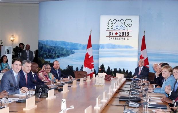 Cac nuoc G7, G7 mo rong deu coi trong hop tac voi Viet Nam hinh anh 1