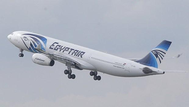 Nguyen nhan vu roi may bay EgyptAir nam 2016 khien 66 nguoi thiet mang hinh anh 1