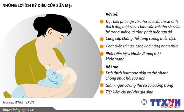 De sua me la nen tang dinh duong cho cuoc song tre tho hinh anh 2
