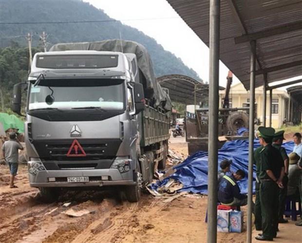 Quang Tri: Phat hien hon 27m3 go quy hiem giau tinh vi trong phe lieu hinh anh 1
