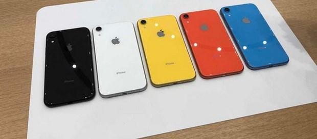 To Nikkei: Apple huy bo ke hoach tang san luong iPhone XR hinh anh 1