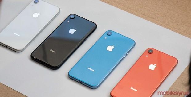 Ly giai nguyen nhan khien iPhone XR tro thanh mau iPhone ban chay nhat hinh anh 1