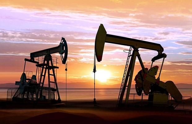 San luong khai thac dau cua OPEC giam nhe trong thang 11 hinh anh 1
