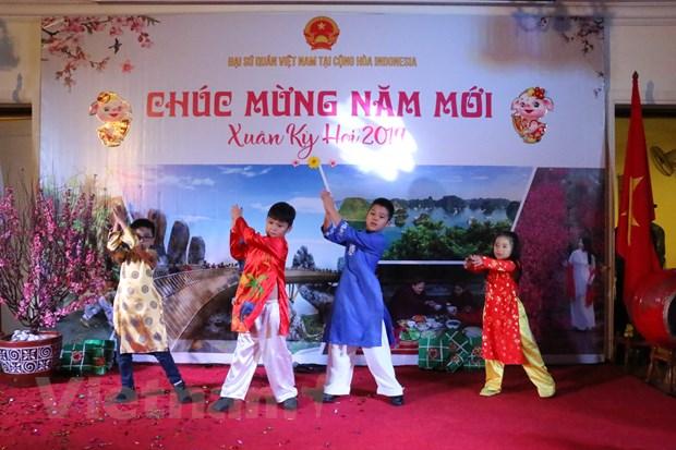 Cong dong nguoi Viet o Indonesia sum hop don Xuan Ky Hoi hinh anh 2