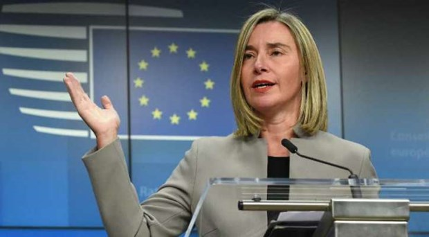 EU khang dinh can co nhom lien lac trong van de Venezuela hinh anh 1