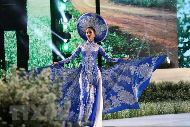Khai mac Le hoi Ao dai Thanh pho Ho Chi Minh lan 6-2019 hinh anh 2