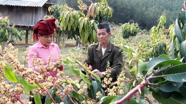 """Lan toa chuong trinh """"Dong hanh cung phu nu bien cuong"""