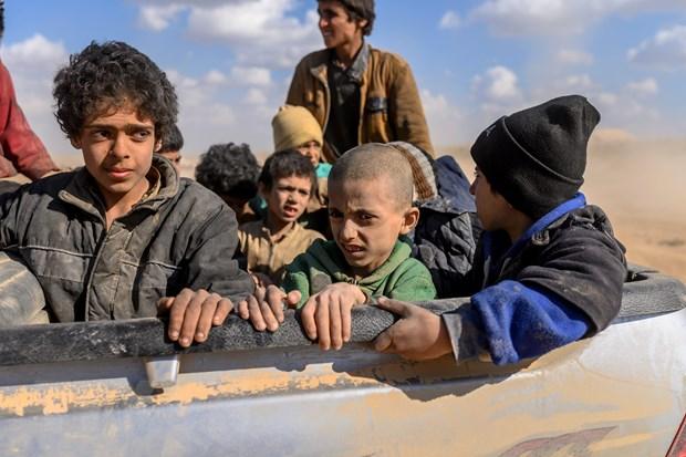 Bo Ngoai giao Syria bac bo tuyen bo chung cua My, Phap va Anh hinh anh 1