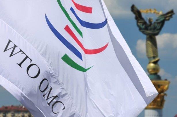 WTO ung ho Nga trong tranh cai voi Ukraine ve trung chuyen hang hoa hinh anh 1