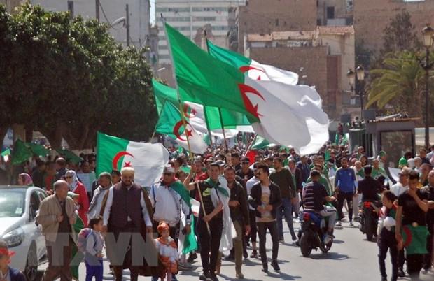 Bau cu Tong thong Algeria: Nhieu ung cu vien nop ho so dang ky hinh anh 1