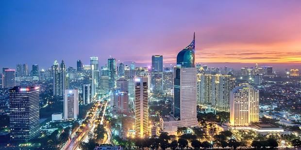 Indonesia se quyet dinh noi xay dung thu do moi trong nam 2019 hinh anh 1