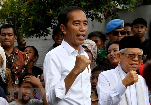 Lanh dao Viet Nam dien mung Tong thong, Pho Tong thong Indonesia hinh anh 1