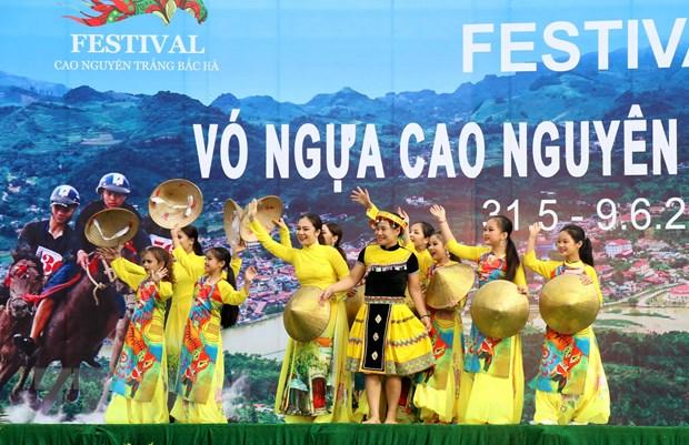 Khai mac festival vo ngua cao nguyen trang Bac Ha nam 2019 hinh anh 1