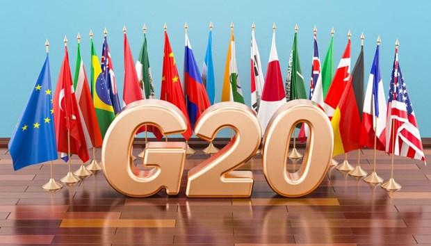 Nhat Ban se neu van de mat can doi can can vang lai tai G20 hinh anh 1