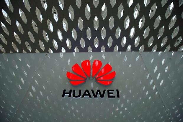 Huawei sap dam phan voi Nga ve viec su dung he dieu hanh Avrora hinh anh 1