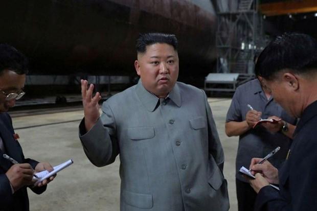 Ong Kim Jong-un da kiem tra mot tau ngam moi duoc che tao hinh anh 1