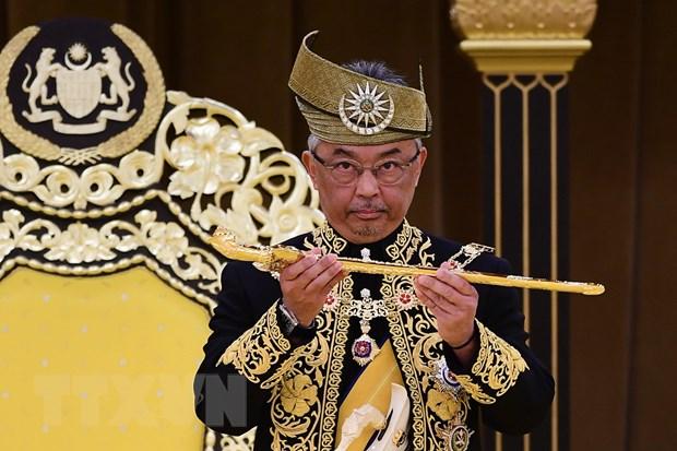Quoc vuong Malaysia Abdullah Sultan Ahmad Shah chinh thuc dang quang hinh anh 1