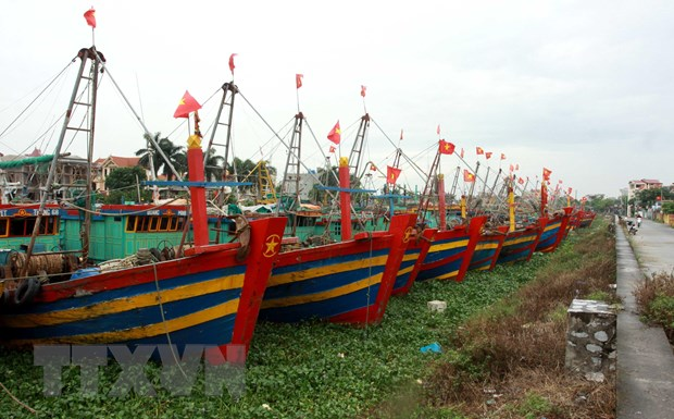 Sang 2/8, bao so 3 manh cap 9 di chuyen vao phia Bac cua Vinh Bac Bo hinh anh 1