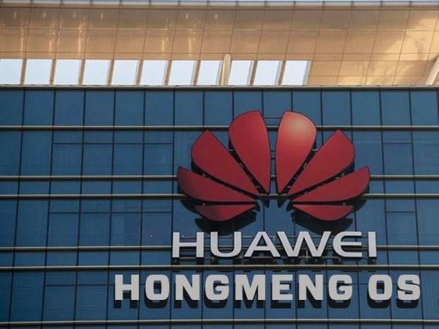 Huawei dang thu nghiem dien thoai chay he dieu hanh Hongmeng hinh anh 1