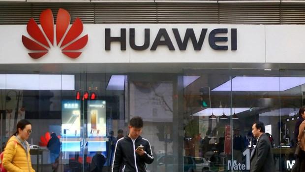 "Lenh cam van dang mang lai ""co hoi vang"" cho Huawei o Trung Quoc hinh anh 1"