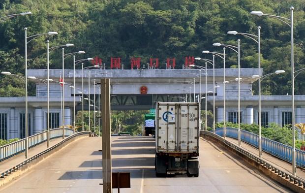 Hang tram xe thanh long bi un nhieu ngay tai cua khau Lao Cai hinh anh 1