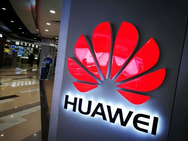 Dien thoai Huawei Mate 30 se ra mat ma khong co ung dung Google hinh anh 1