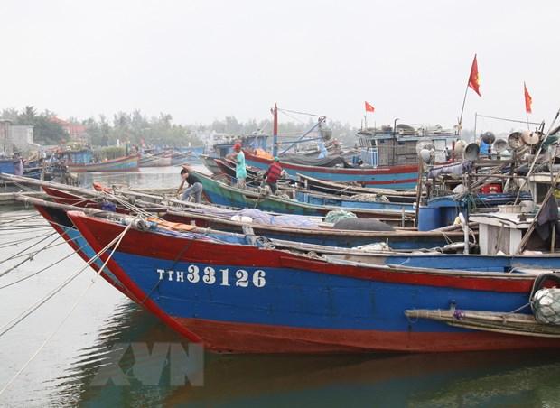 Ap thap nhiet doi dang cach dat lien Quang Tri, Quang Ngai 100km hinh anh 1
