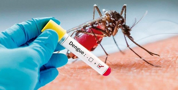 Kon Tum: Mot truong hop tu vong do sot xuat huyet Dengue hinh anh 1