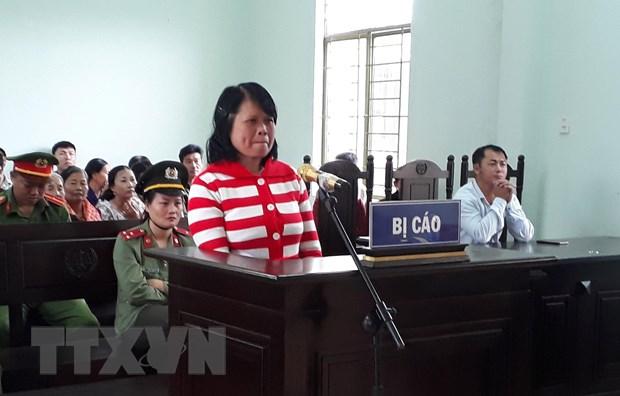 Gia Lai: Tuyen phat 2 nam 6 thang tu giam voi doi tuong Nguyen Thi Hue hinh anh 1