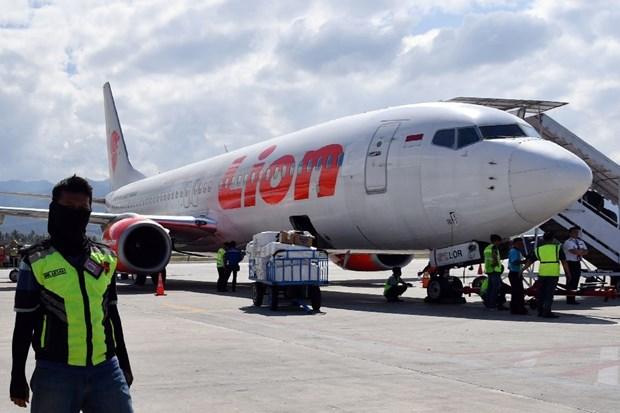 Indonesia chia se bao cao cuoi cung ve tai nan may bay Lion Air hinh anh 1