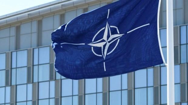 Thuong vien My phe chuan CH Bac Macedonia gia nhap NATO hinh anh 1