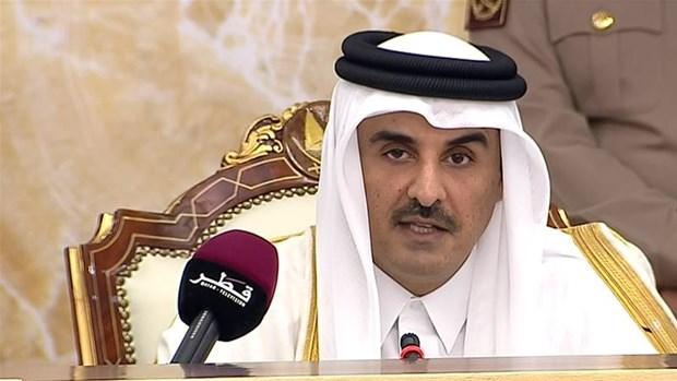 Qatar khang dinh da vuot qua nhung phong toa cua Saudi Arabia hinh anh 1