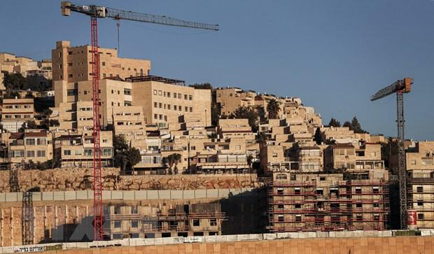 Israel, Palestine phan ung viec My thay doi lap truong ve khu dinh cu hinh anh 1