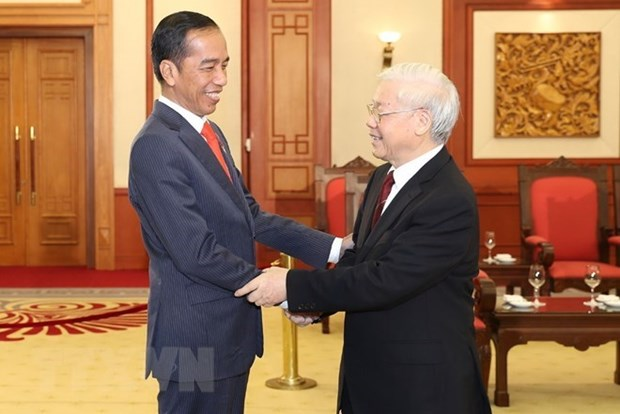 Quan he Viet Nam-Indonesia dua tren nhung nen tang vung chac hinh anh 1