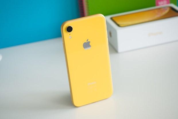iPhone XR la mau dien thoai thong minh ban chay nhat nam 2019 hinh anh 1