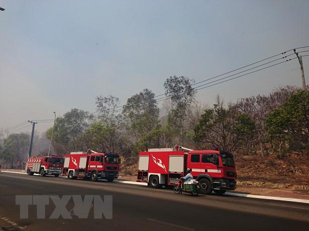 Ba Ria-Vung Tau: Chay rung lan nhanh tren nui Minh Dam hinh anh 2