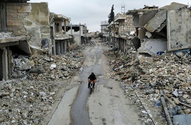 Viet Nam ung ho tim kiem giai phap chinh tri cho Syria hinh anh 1