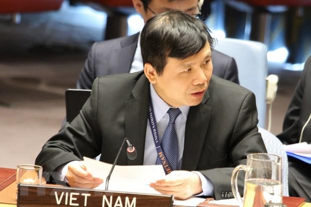 Viet Nam ung ho giai quyet cac thach thuc ve khung bo tai chau Phi hinh anh 1