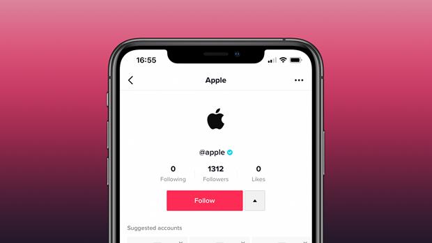 Apple chinh thuc gia nhap mang xa mang hoi video TikTok hinh anh 1